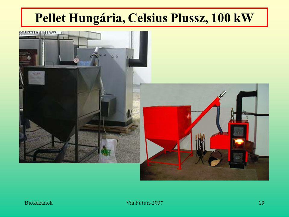 Pellet Hungária, Celsius Plussz, 100 kW