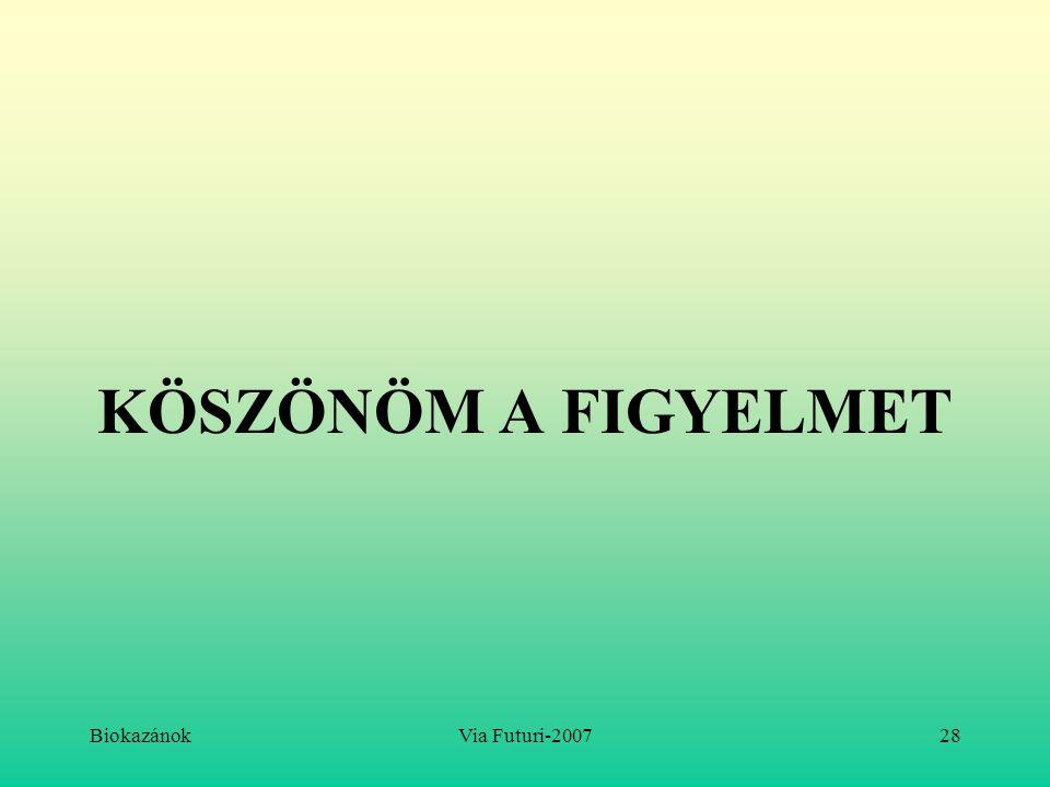 KÖSZÖNÖM A FIGYELMET Biokazánok Via Futuri-2007