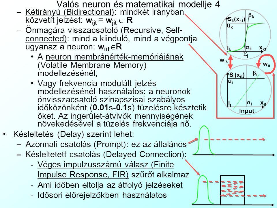 Valós neuron és matematikai modellje 4