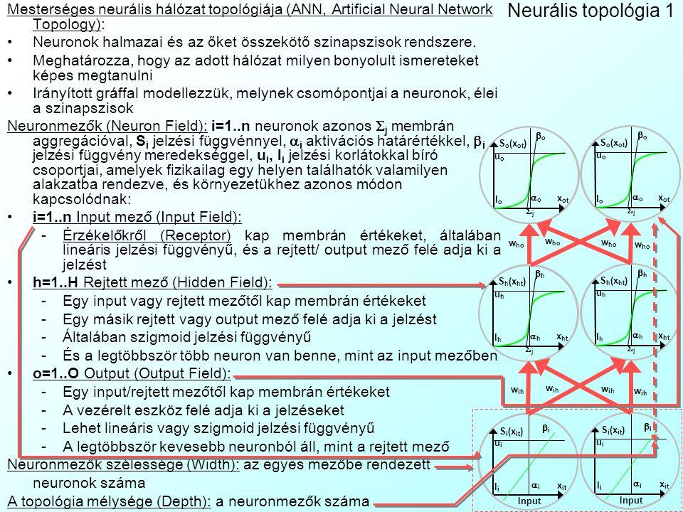 Mesterséges neurális hálózat topológiája (ANN, Artificial Neural Network Topology):