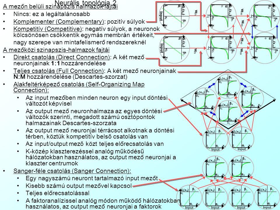 Neurális topológia 2 A mezőn belüli szinapszis halmazok fajtái