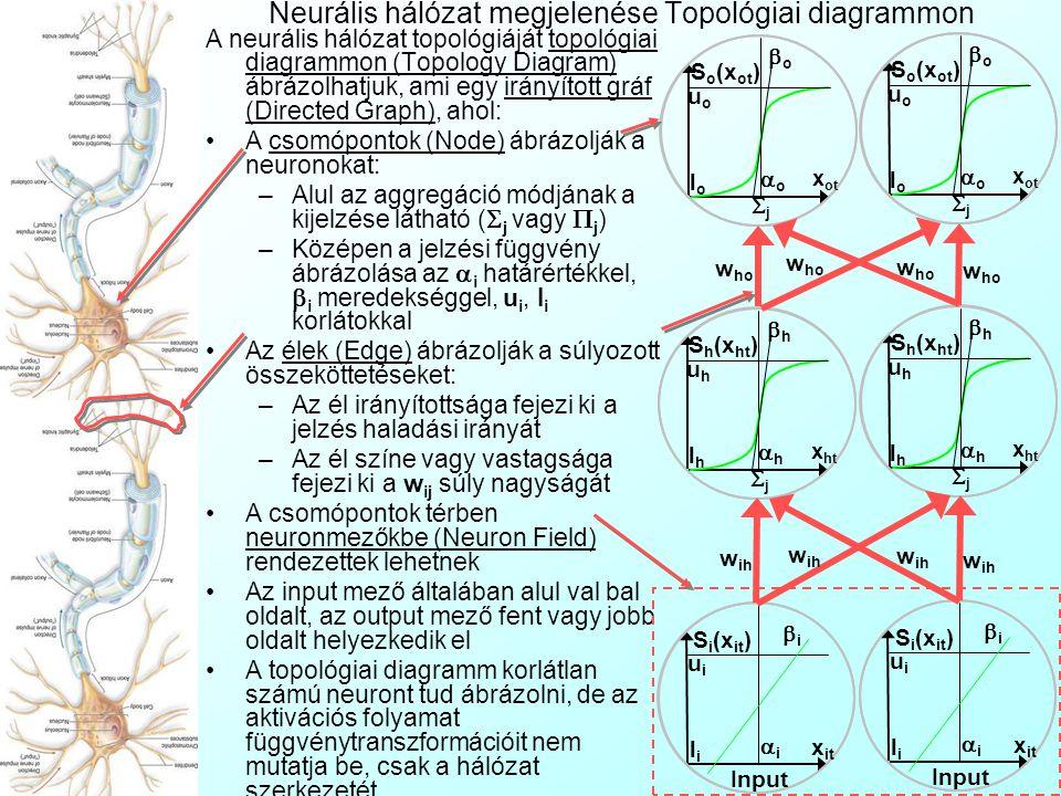 Neurális hálózat megjelenése Topológiai diagrammon