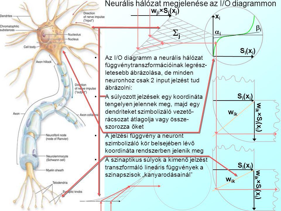 Neurális hálózat megjelenése az I/O diagrammon
