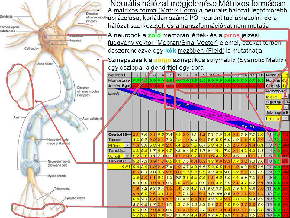 Neurális hálózat megjelenése Mátrixos formában