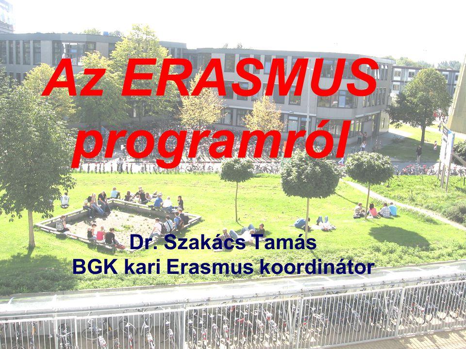 Dr. Szakács Tamás BGK kari Erasmus koordinátor