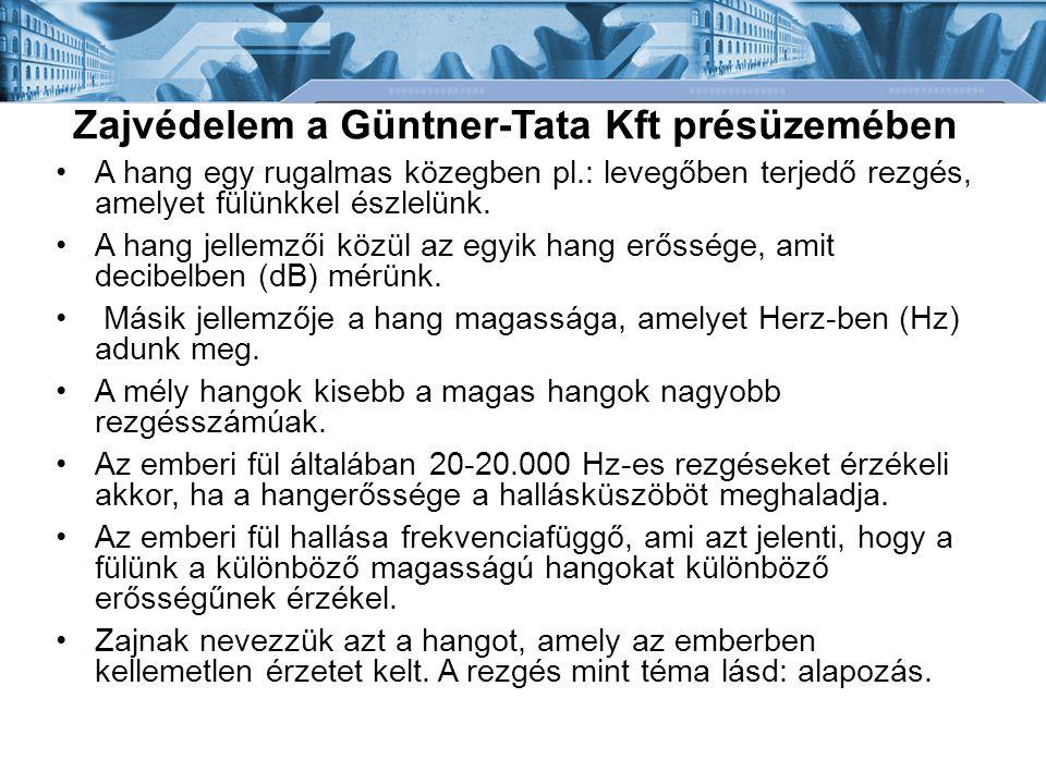 Zajvédelem a Güntner-Tata Kft présüzemében