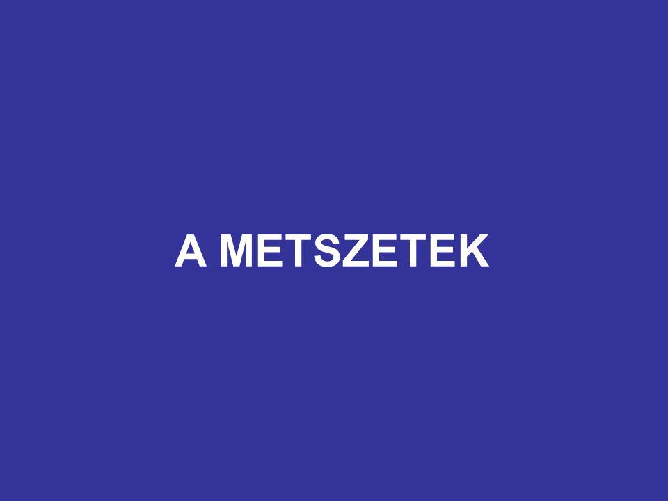 A METSZETEK