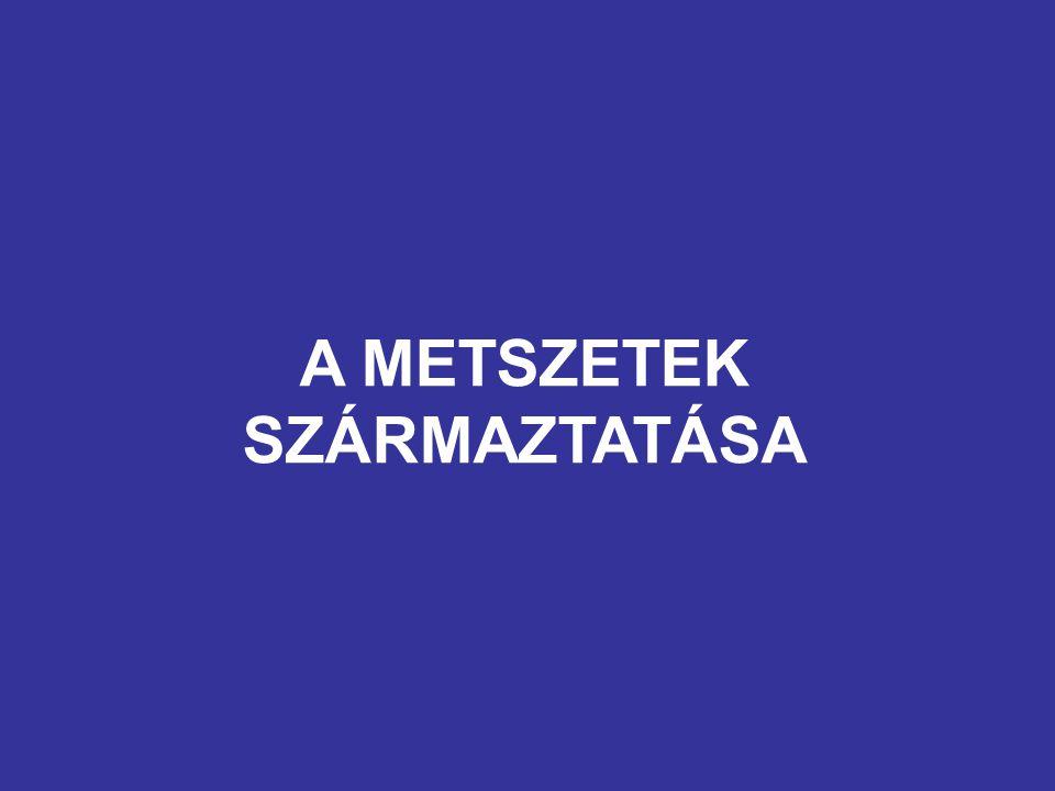 A METSZETEK SZÁRMAZTATÁSA