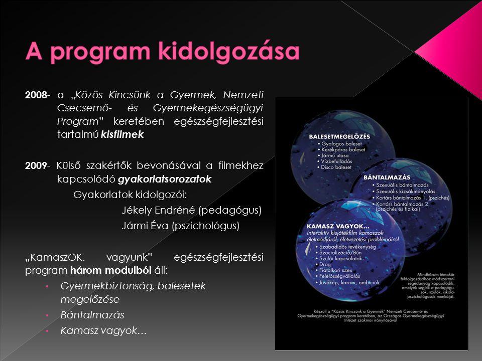 A program kidolgozása