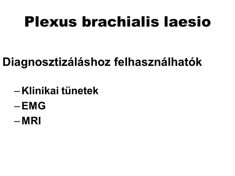 Plexus brachialis laesio