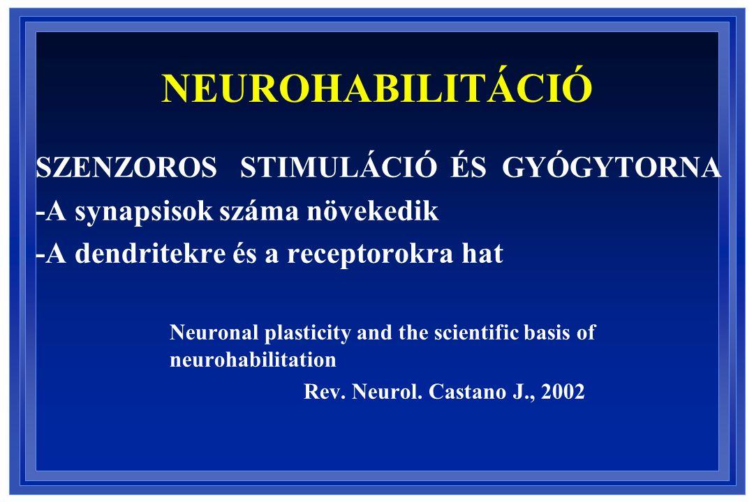NEUROHABILITÁCIÓ SZENZOROS STIMULÁCIÓ ÉS GYÓGYTORNA
