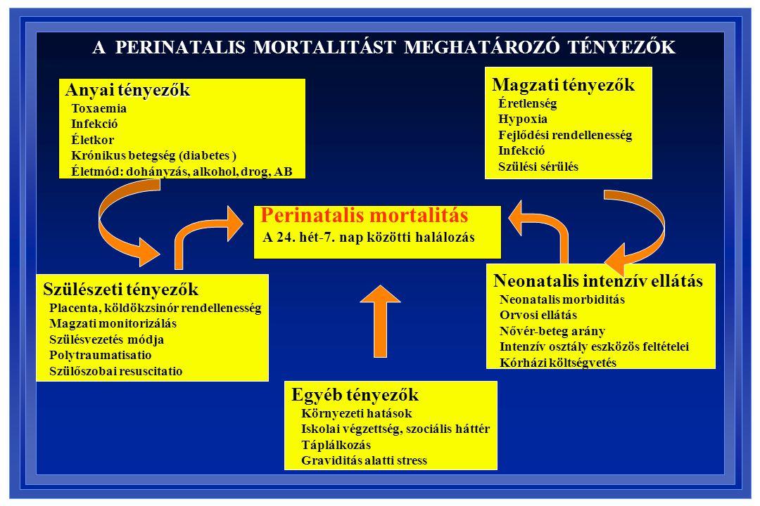 A PERINATALIS MORTALITÁST MEGHATÁROZÓ TÉNYEZŐK