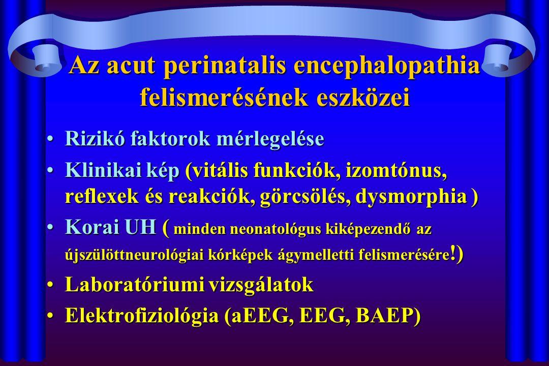 Az acut perinatalis encephalopathia felismerésének eszközei