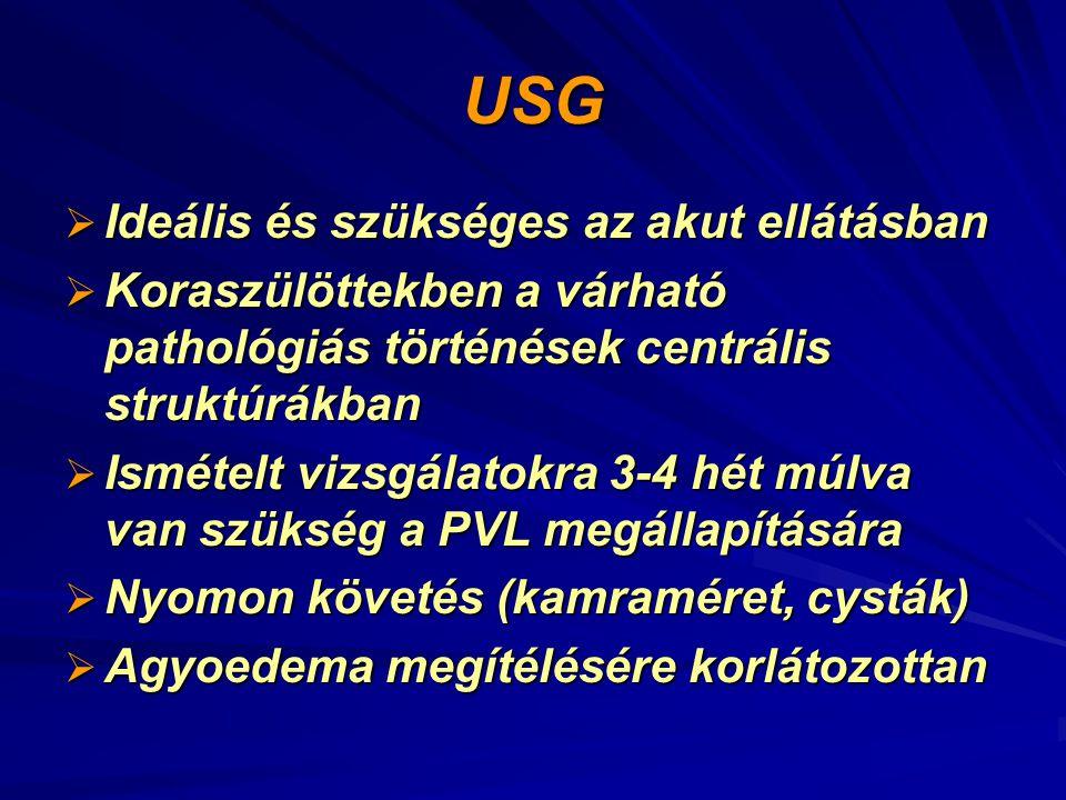 USG Ideális és szükséges az akut ellátásban