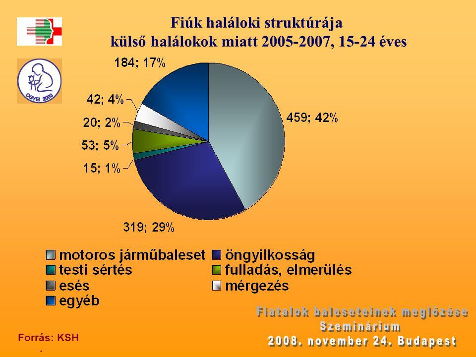 Fiúk haláloki struktúrája külső halálokok miatt 2005-2007, 15-24 éves