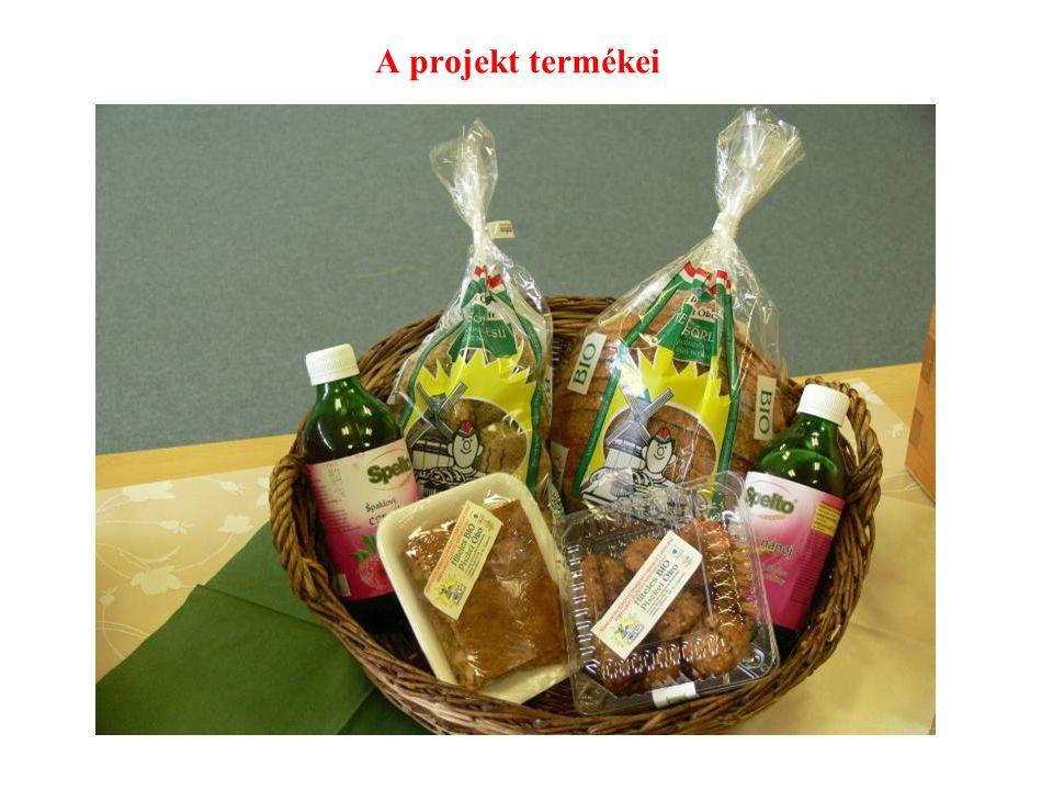 A projekt termékei