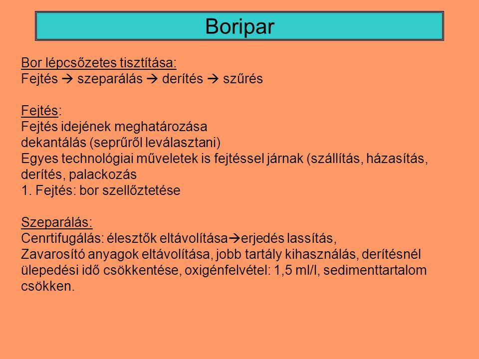 Boripar Bor lépcsőzetes tisztítása: