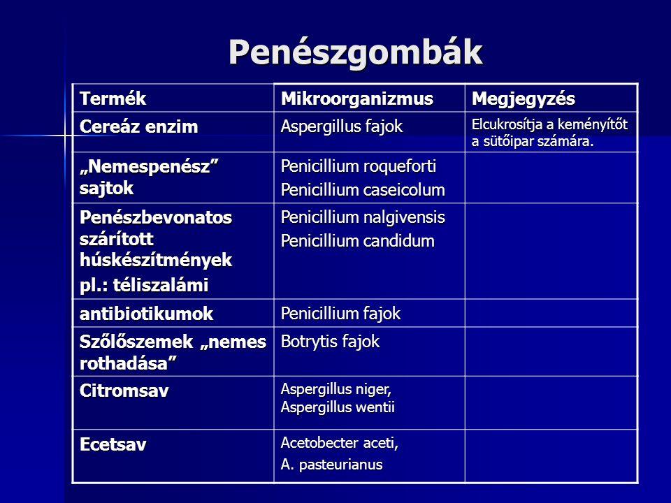 Penészgombák Termék Mikroorganizmus Megjegyzés Cereáz enzim