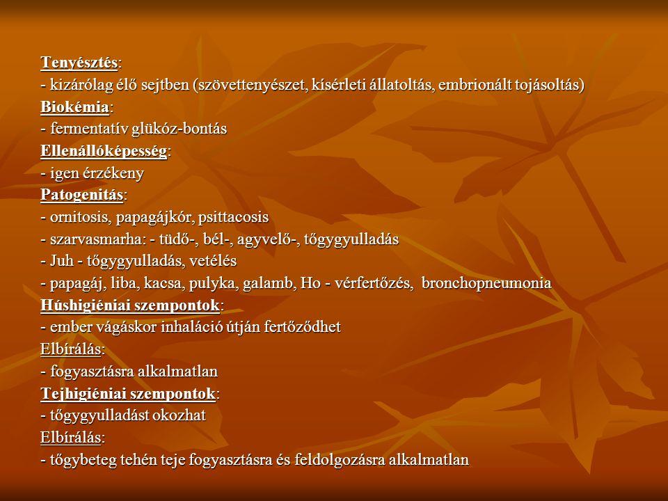 Tenyésztés: - kizárólag élő sejtben (szövettenyészet, kísérleti állatoltás, embrionált tojásoltás) Biokémia: