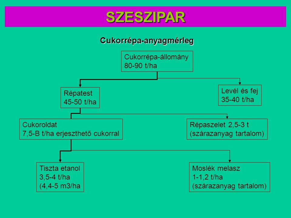 SZESZIPAR Cukorrépa-anyagmérleg Cukorrépa-állomány 80-90 t/ha