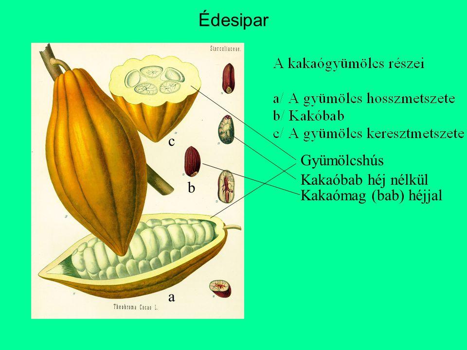 Édesipar c Gyümölcshús Kakaóbab héj nélkül b Kakaómag (bab) héjjal a