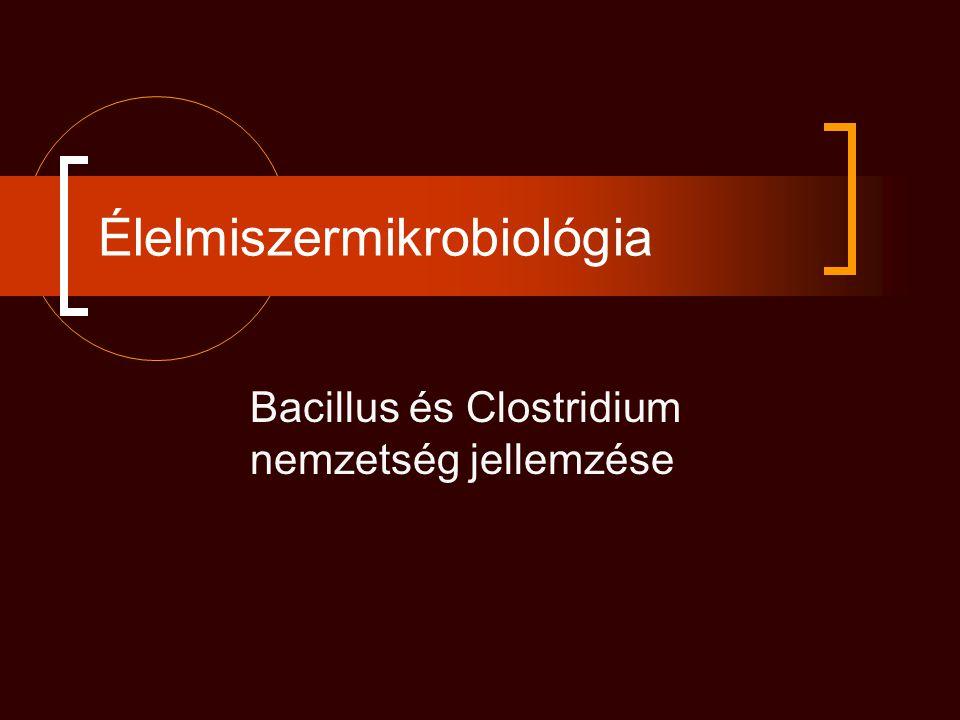 Élelmiszermikrobiológia