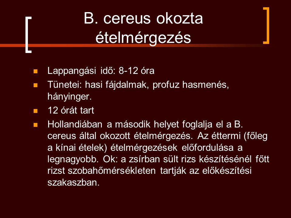 B. cereus okozta ételmérgezés