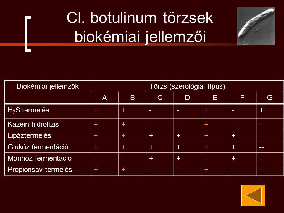 Cl. botulinum törzsek biokémiai jellemzői