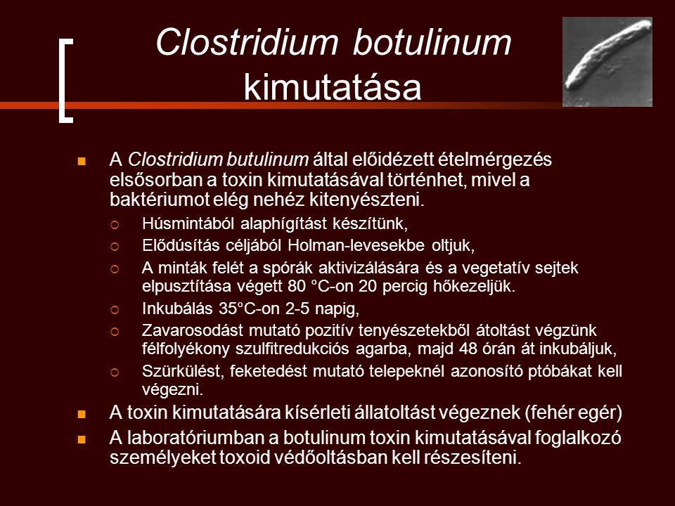 Clostridium botulinum kimutatása