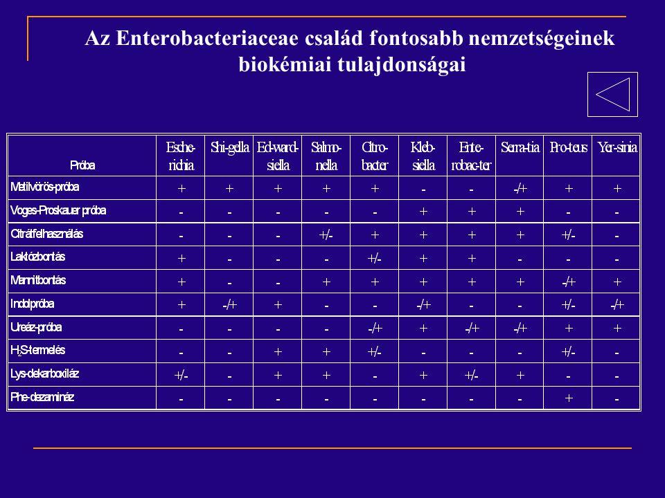 Az Enterobacteriaceae család fontosabb nemzetségeinek biokémiai tulajdonságai