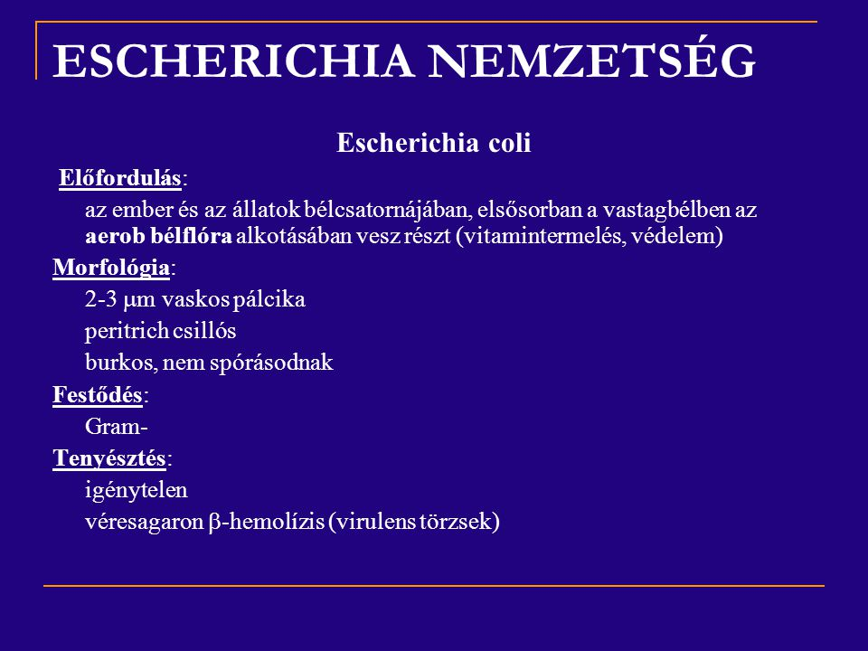 ESCHERICHIA NEMZETSÉG