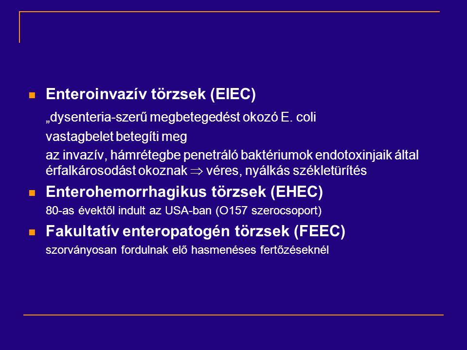 Enteroinvazív törzsek (EIEC)