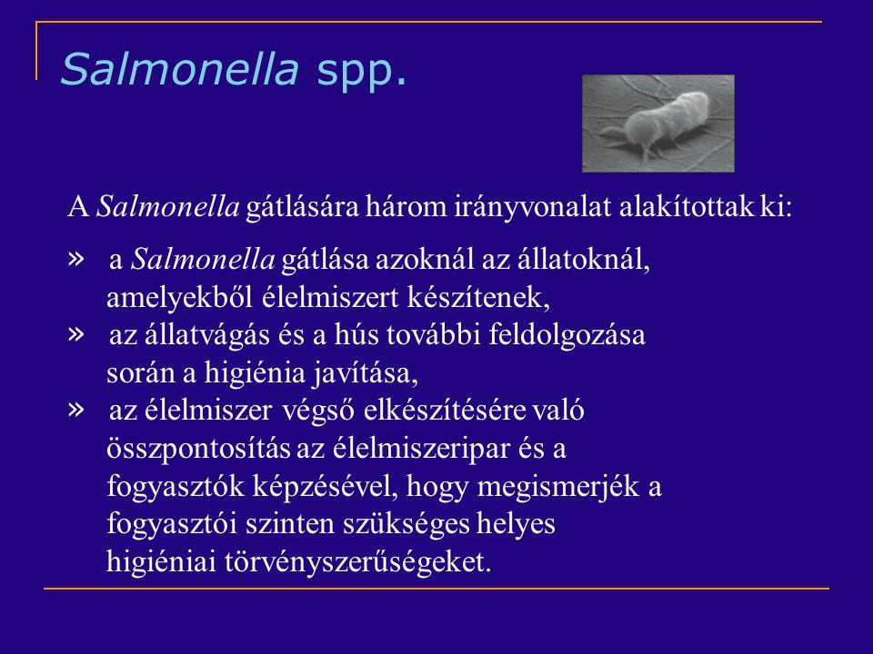 Salmonella spp. A Salmonella gátlására három irányvonalat alakítottak ki: a Salmonella gátlása azoknál az állatoknál,
