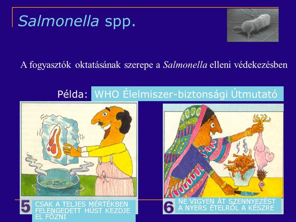 Salmonella spp. A fogyasztók oktatásának szerepe a Salmonella elleni védekezésben. Példa: WHO Élelmiszer-biztonsági Útmutató.
