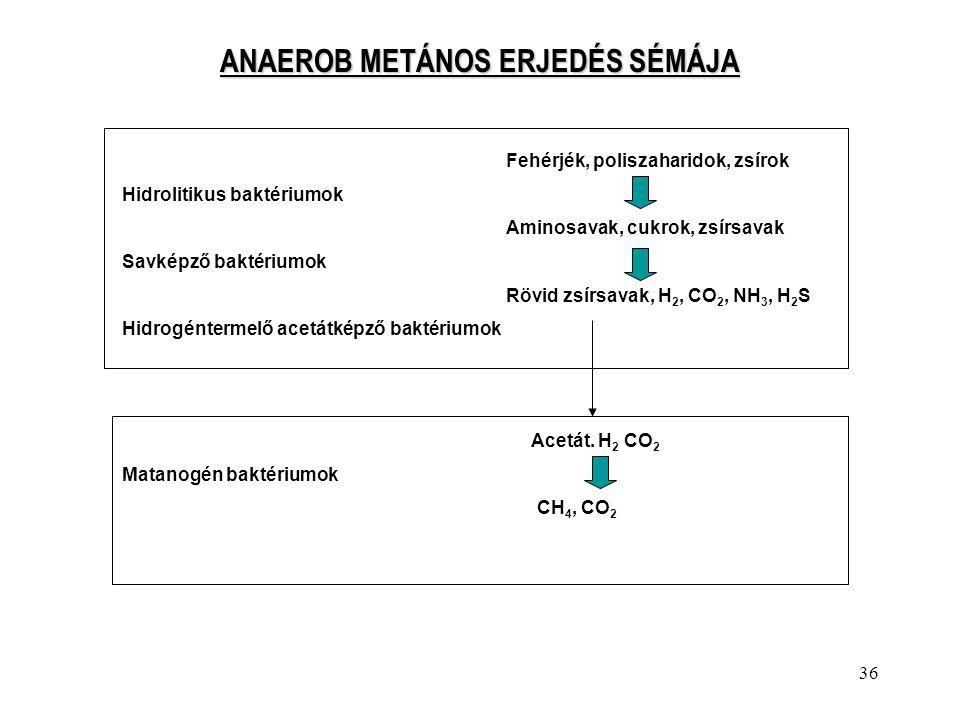 ANAEROB METÁNOS ERJEDÉS SÉMÁJA