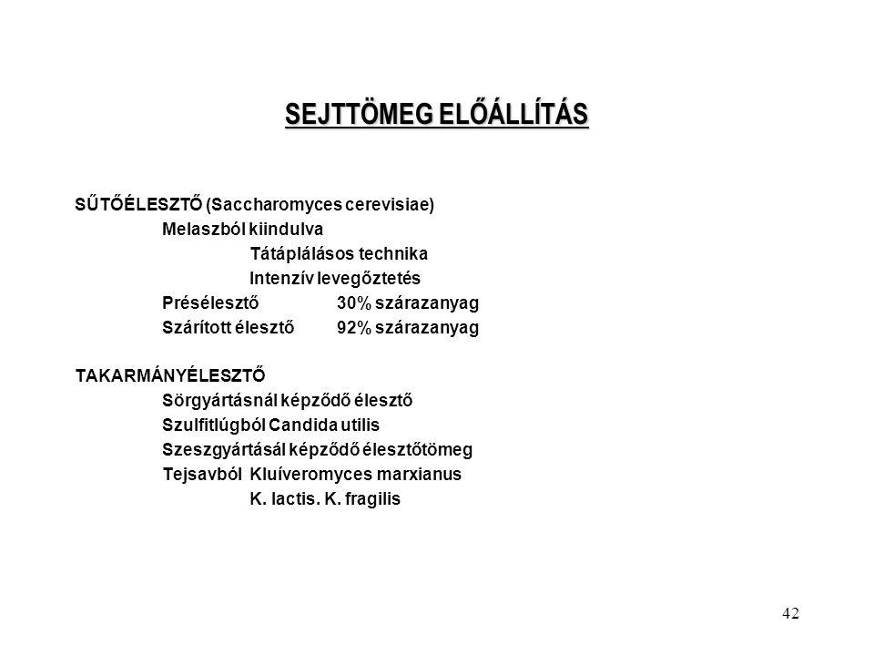 SEJTTÖMEG ELŐÁLLÍTÁS SŰTŐÉLESZTŐ (Saccharomyces cerevisiae)