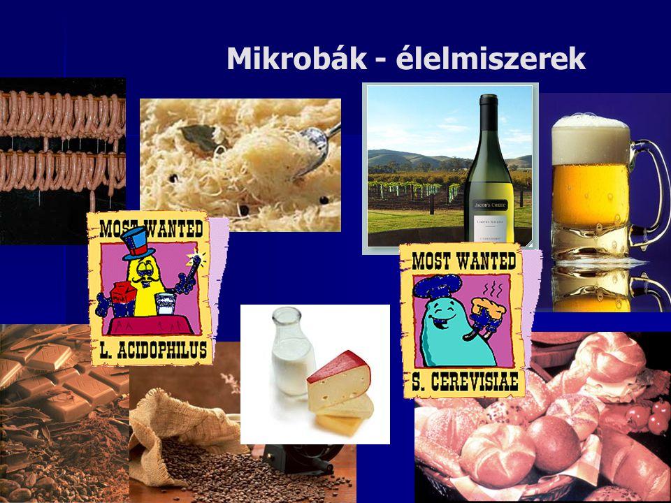 Mikrobák - élelmiszerek