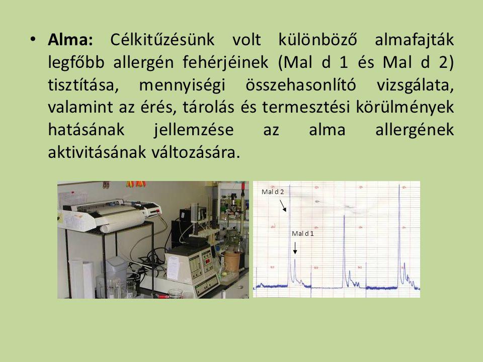 Alma: Célkitűzésünk volt különböző almafajták legfőbb allergén fehérjéinek (Mal d 1 és Mal d 2) tisztítása, mennyiségi összehasonlító vizsgálata, valamint az érés, tárolás és termesztési körülmények hatásának jellemzése az alma allergének aktivitásának változására.