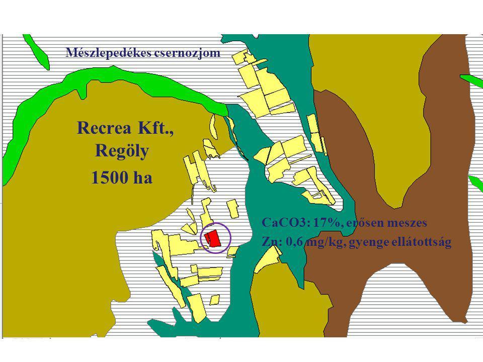 Recrea Kft., Regöly 1500 ha Mészlepedékes csernozjom