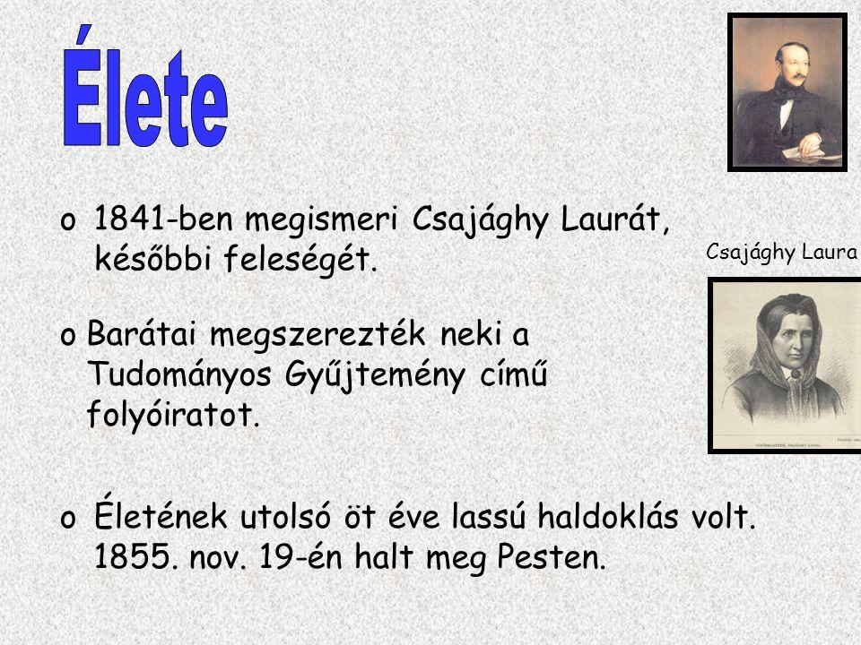 Élete 1841-ben megismeri Csajághy Laurát, későbbi feleségét.