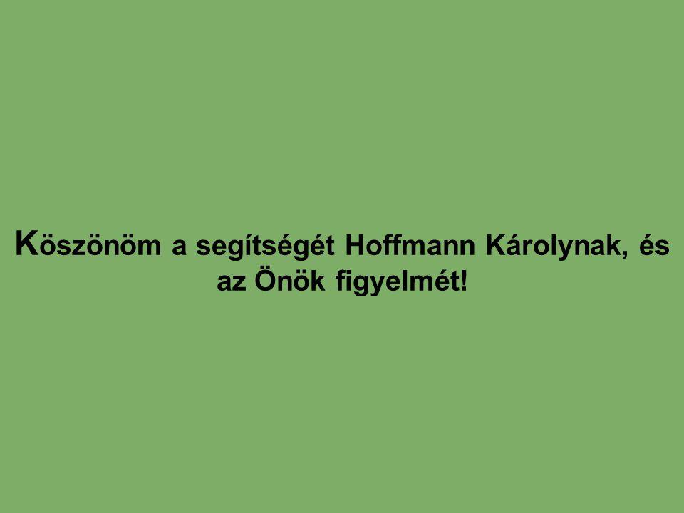 Köszönöm a segítségét Hoffmann Károlynak, és az Önök figyelmét!