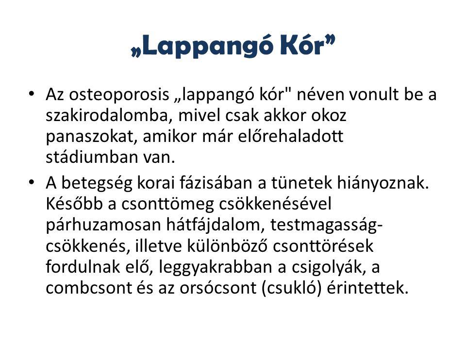 """""""Lappangó Kór"""