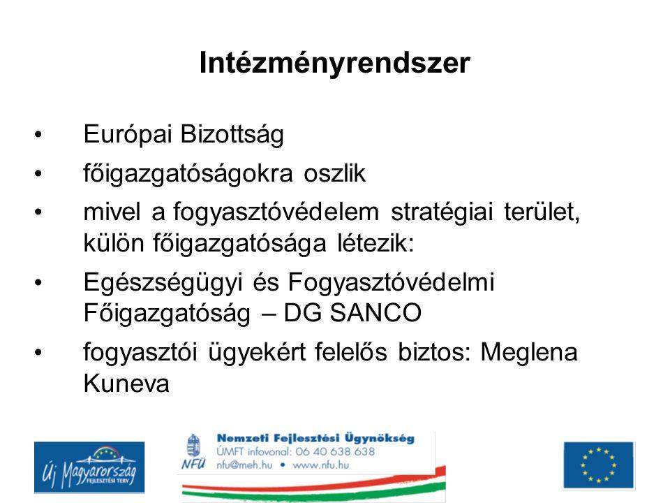 Intézményrendszer Európai Bizottság főigazgatóságokra oszlik