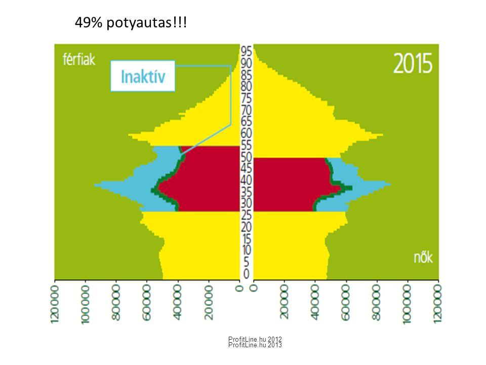 49% potyautas!!! ProfitLine.hu 2013 ProfitLine.hu 2012