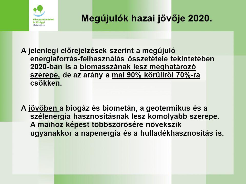 Megújulók hazai jövője 2020.