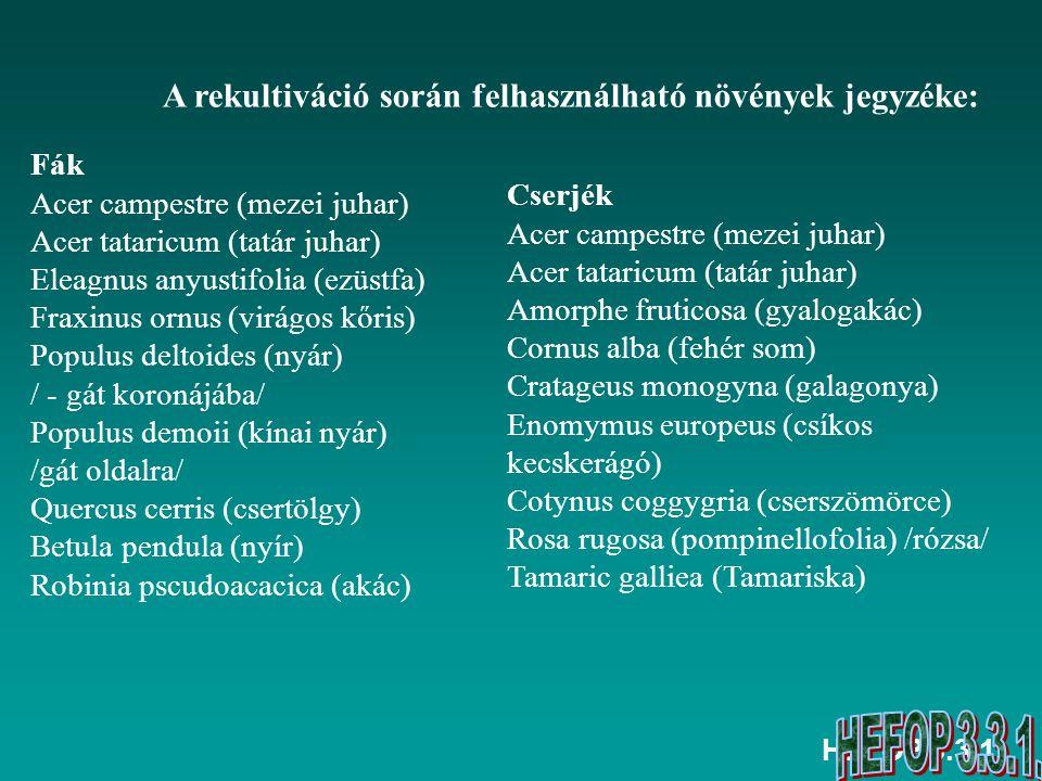 A rekultiváció során felhasználható növények jegyzéke: