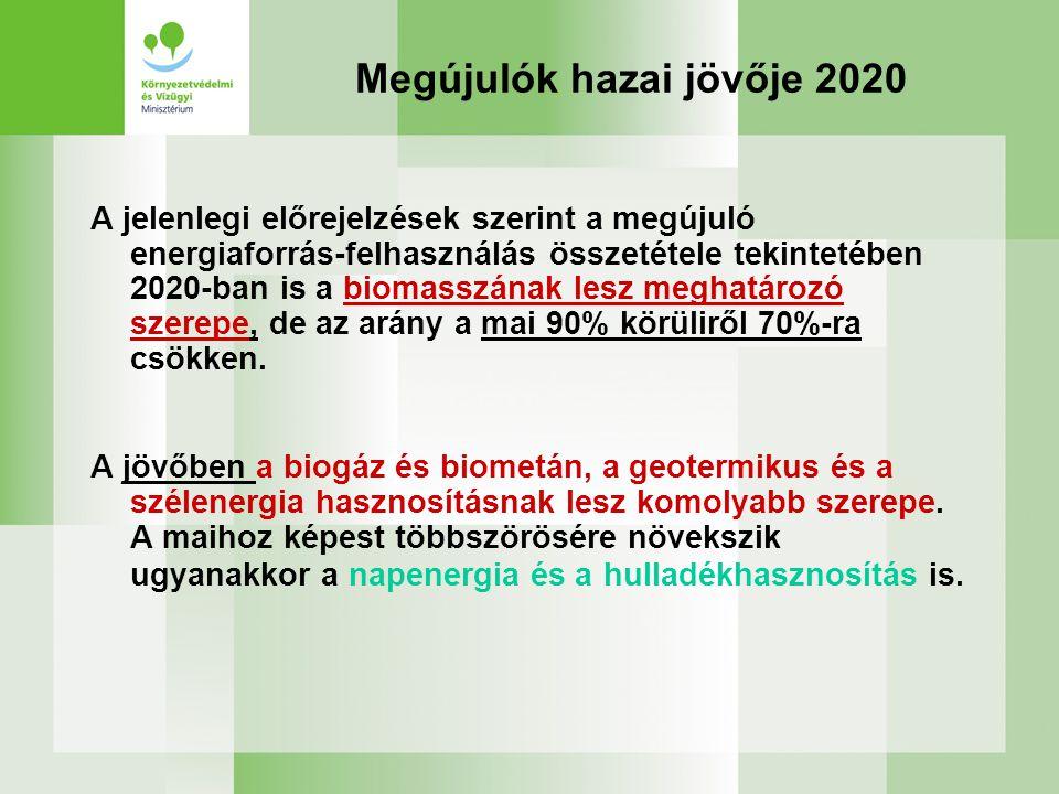 Megújulók hazai jövője 2020