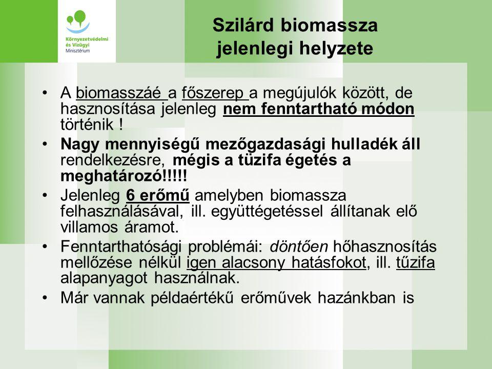Szilárd biomassza jelenlegi helyzete