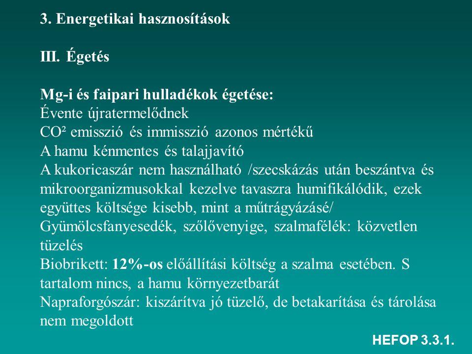 3. Energetikai hasznosítások III. Égetés