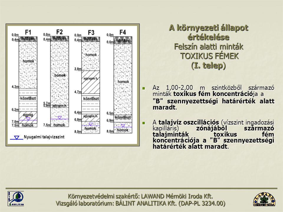 A környezeti állapot értékelése Felszín alatti minták TOXIKUS FÉMEK (I